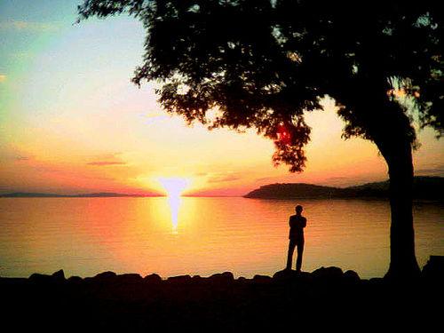 Sunset.Life