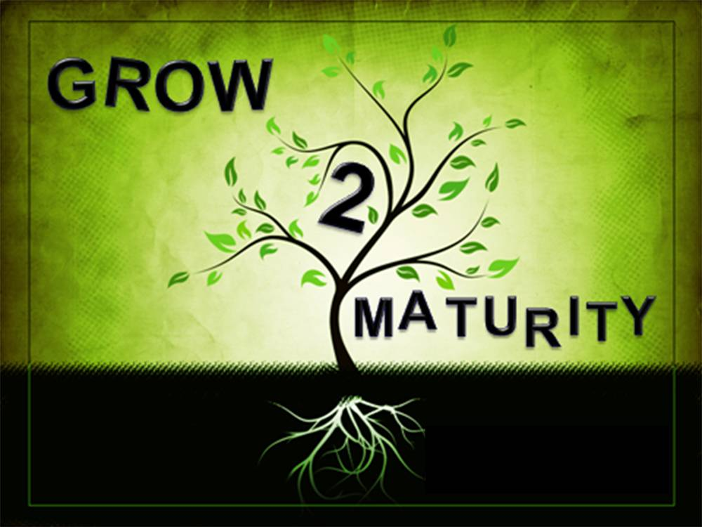 a definiton essay on the word maturity