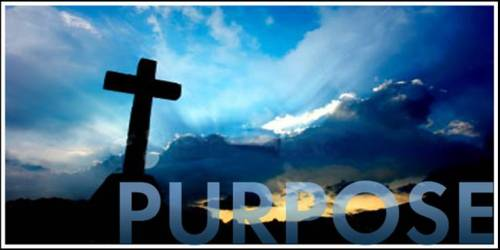 Purpose.Cross