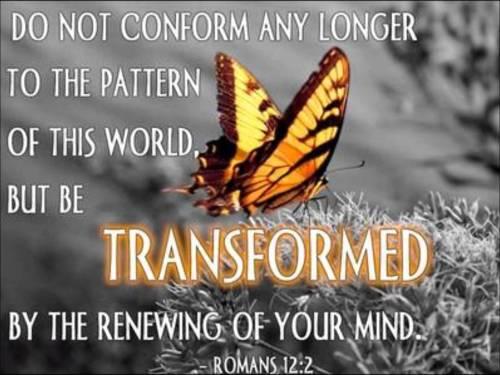 Conformed.Transformed