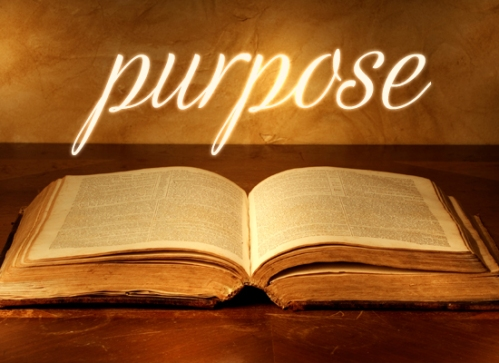 purpose.bible