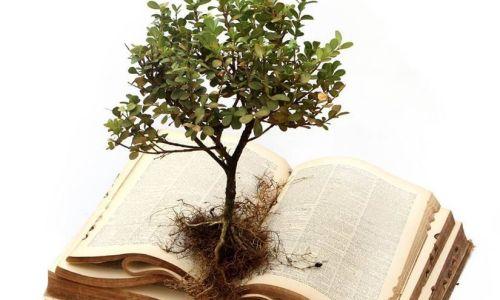 Growth.Bible