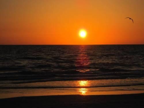 Sunset.IndianRocksBeach