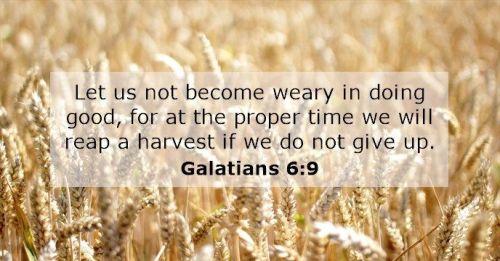 Galatians 6.9