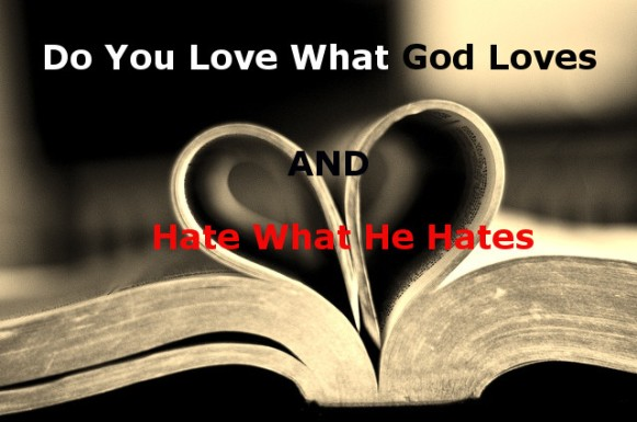 Image result for image what God hates